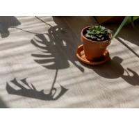 Виниловый ламинат Vinilam Click 3,7 мм арт. 8861 Дуб Ален (Rich)