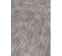 Виниловые полы WINEO 800 Wood Сосна рига яркая DLC00082